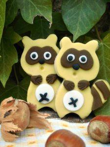 biscotti orsetto lavatore