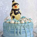 Chocolate winter cake