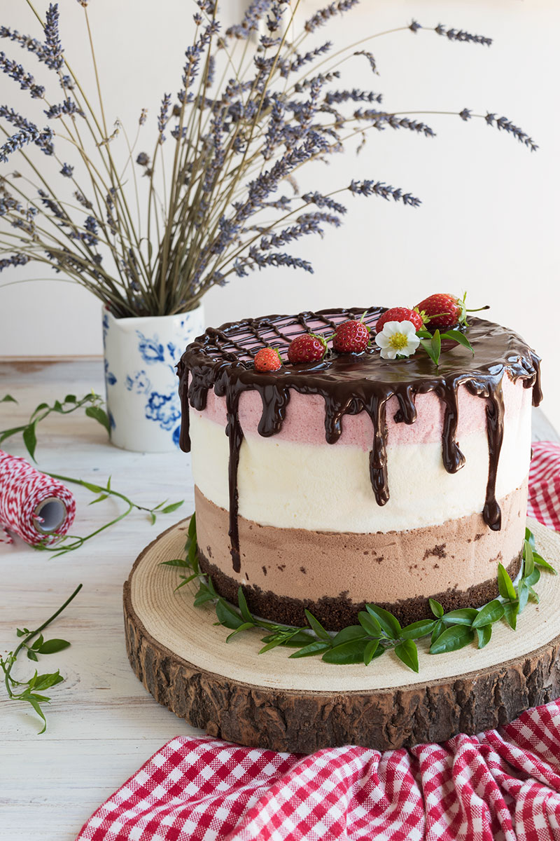 cioccolato e fragola mousse cake